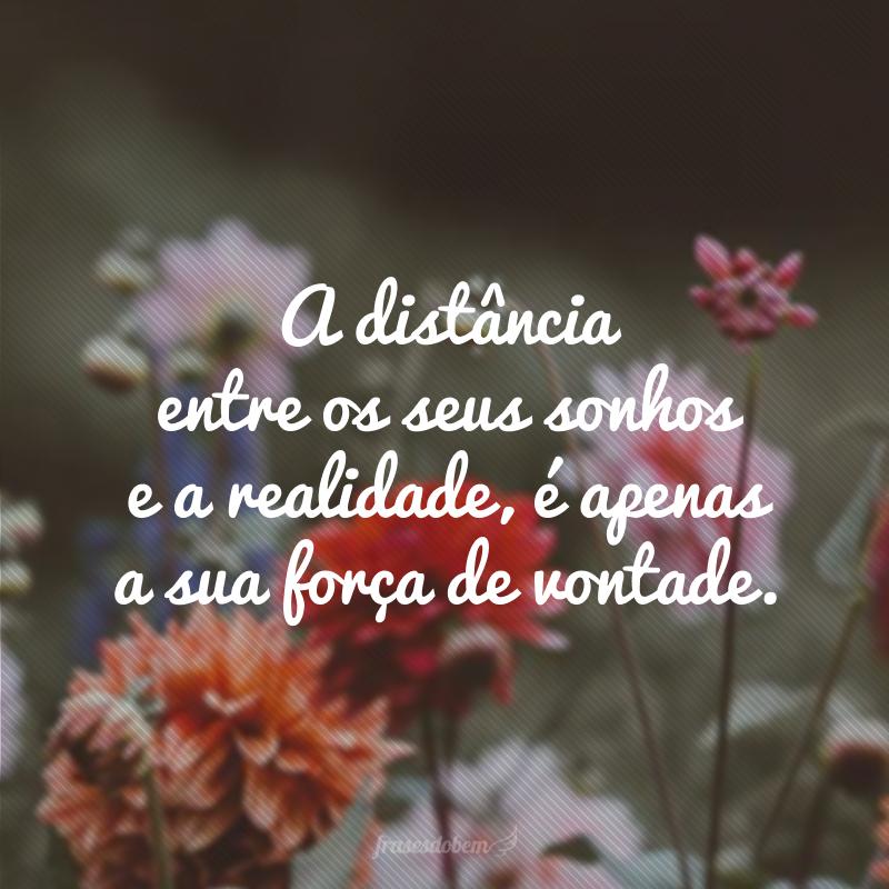 A distância entre os seus sonhos e a realidade, é apenas a sua força de vontade.