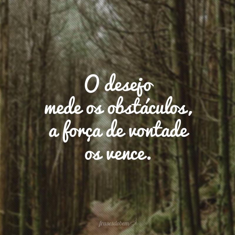 O desejo mede os obstáculos, a força de vontade os vence.