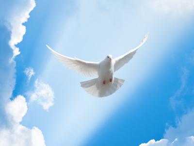 30 frases do Espírito Santo para ter um coração repleto de fogo divino