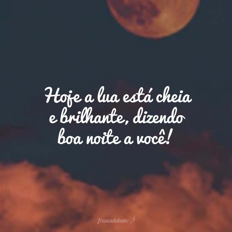 Hoje a lua está cheia e brilhante, dizendo boa noite a você!