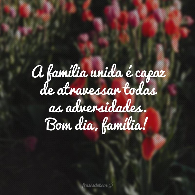 A família unida é capaz de atravessar todas as adversidades. Bom dia, família!