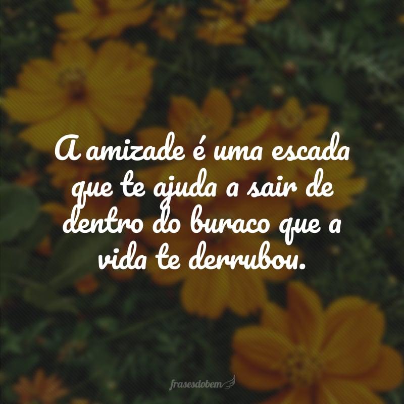 A amizade é uma escada que te ajuda a sair de dentro do buraco que a vida te derrubou.