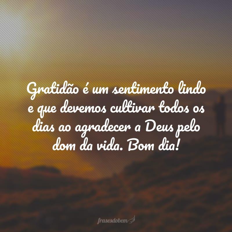 Gratidão é um sentimento lindo e que devemos cultivar todos os dias ao agradecer a Deus pelo dom da vida. Bom dia!