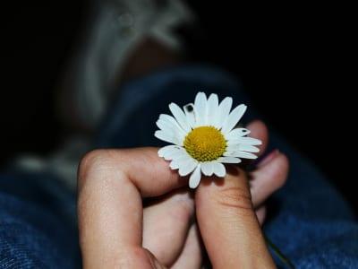 30 frases de aniversário para pai falecido cheias de saudade