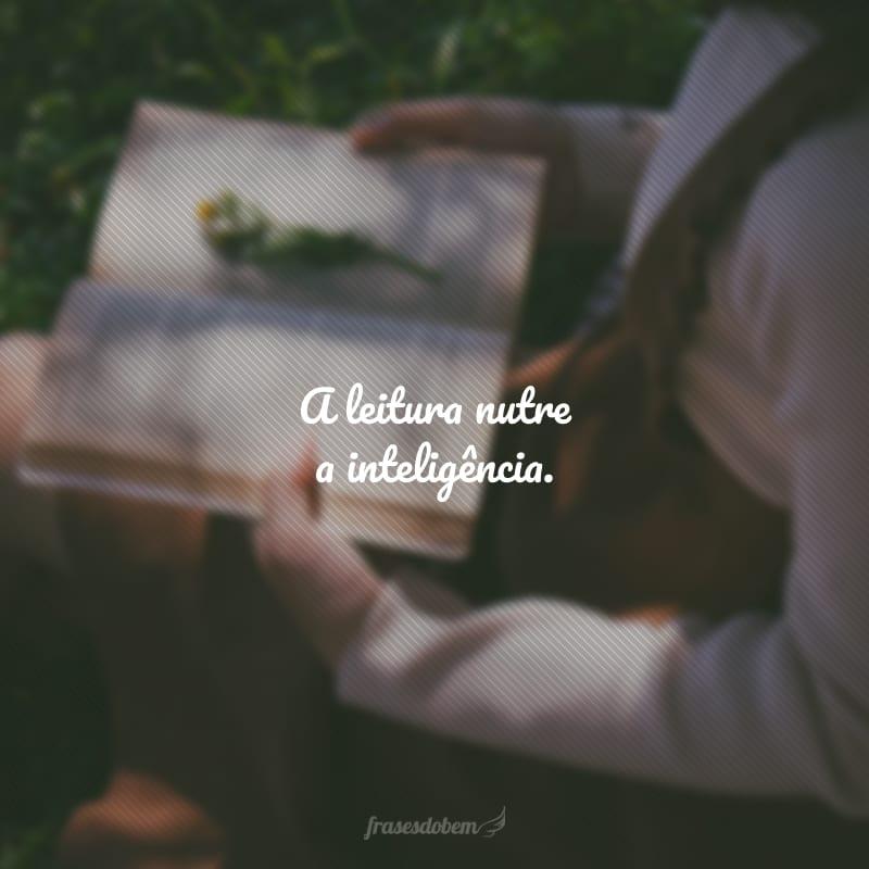 Ler é comer e beber. O espírito que não lê emagrece como um corpo que não come.