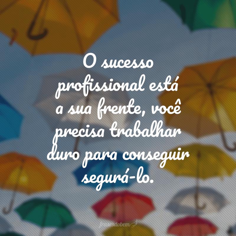 O sucesso profissional está a sua frente, você precisa trabalhar duro para conseguir segurá-lo.