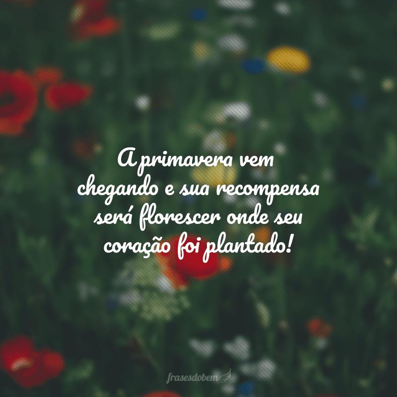 A primavera vem chegando e sua recompensa será florescer onde seu coração foi plantado!