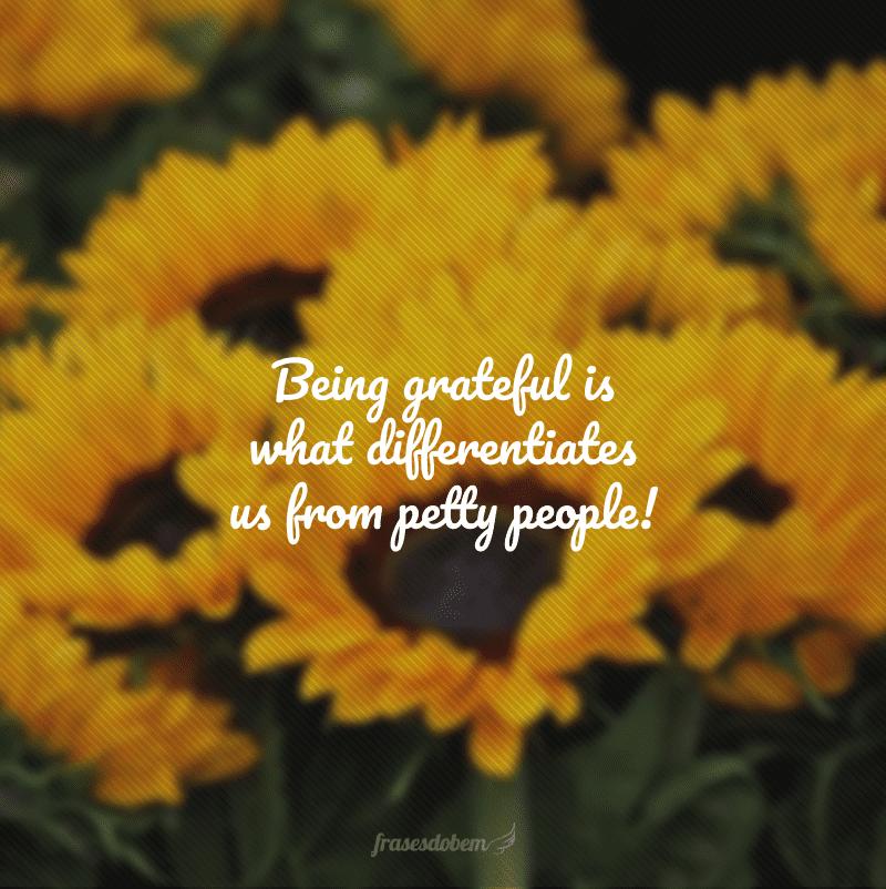 Being grateful is what differentiates us from petty people! (Ser grato é o que nos difere de pessoas mesquinhas!)