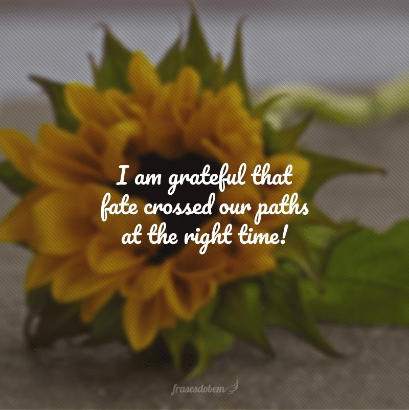 I am grateful that fate crossed our paths at the right time! (Eu agradeço pelo destino ter cruzado nossos caminhos na hora certa!)
