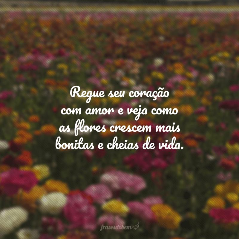 Regue seu coração com amor e veja como as flores crescem mais bonitas e cheias de vida.