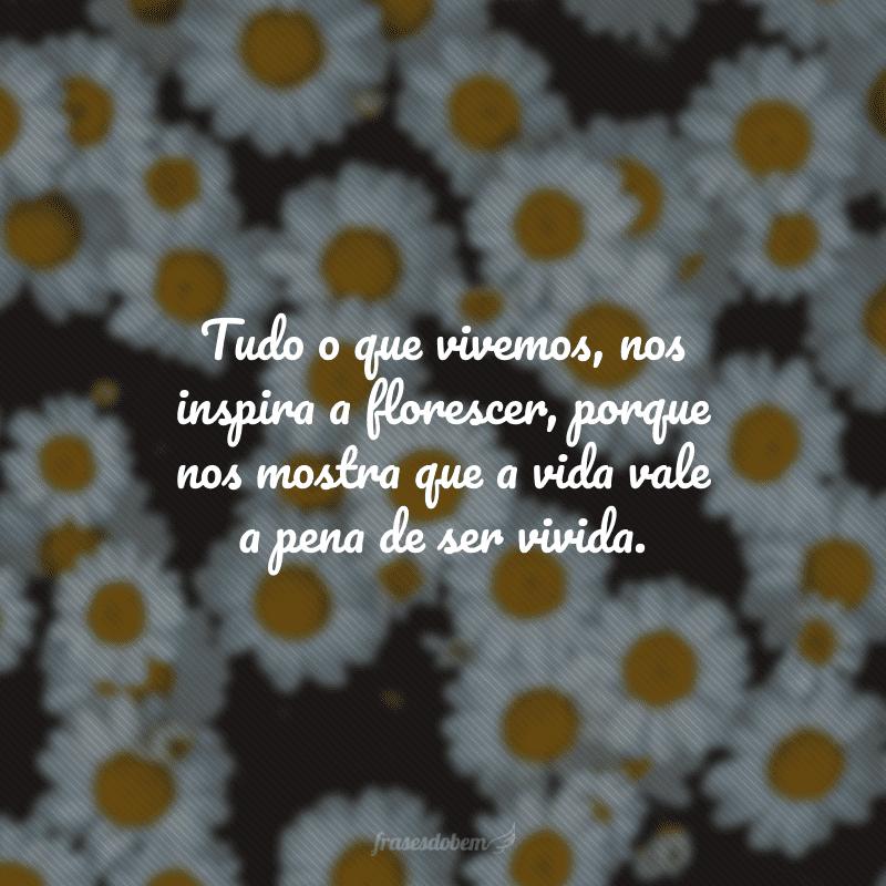 Tudo o que vivemos, nos inspira a florescer, porque nos mostra que a vida vale a pena de ser vivida.