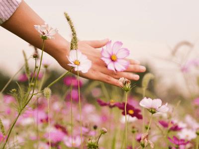 60 frases de boa tarde com flores para colorir e perfumar seu dia