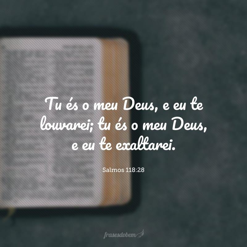 Tu és o meu Deus, e eu te louvarei; tu és o meu Deus, e eu te exaltarei.